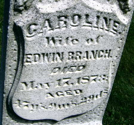 BRANCH, CAROLINE - Linn County, Iowa | CAROLINE BRANCH