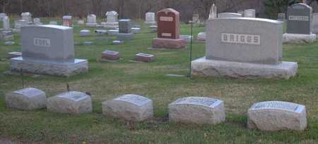 BRIGGS, FAMILY STONE - Linn County, Iowa | FAMILY STONE BRIGGS