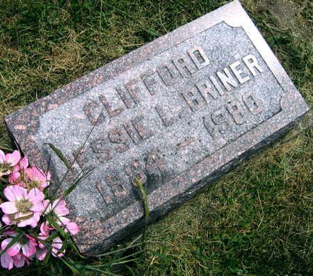 BRINER, CLIFFORD JESSIE L. - Linn County, Iowa | CLIFFORD JESSIE L. BRINER
