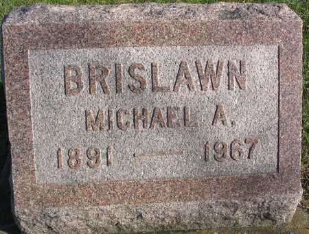 BRISLAWN, MICHAEL A. - Linn County, Iowa | MICHAEL A. BRISLAWN