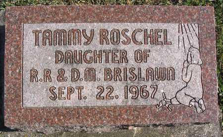BRISLAWN, TAMMY ROSCHEL - Linn County, Iowa | TAMMY ROSCHEL BRISLAWN