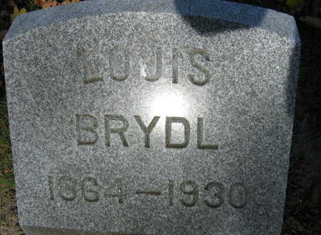 BRYDL, LOUIS - Linn County, Iowa | LOUIS BRYDL
