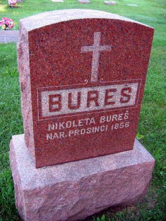 BURES, NIKOLETA - Linn County, Iowa | NIKOLETA BURES