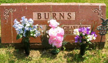 BURNS, LEWIS - Linn County, Iowa | LEWIS BURNS