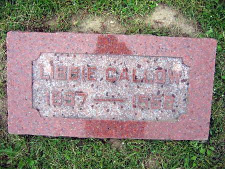 CALLOW, LIBBIE - Linn County, Iowa   LIBBIE CALLOW