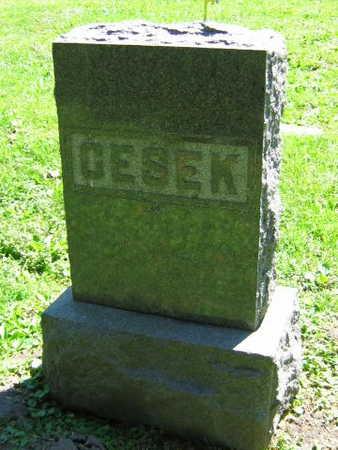 CESEK, FAMILY STONE - Linn County, Iowa | FAMILY STONE CESEK