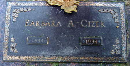 CIZEK, BARBARA A. - Linn County, Iowa | BARBARA A. CIZEK