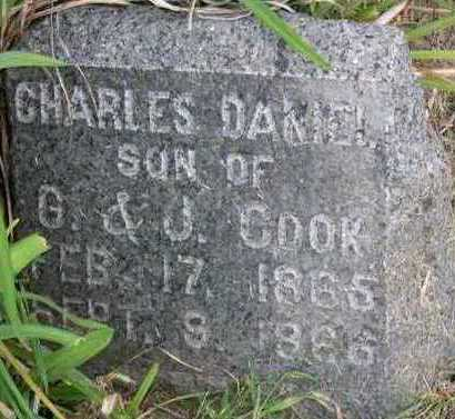 COOK, CHARLES DANIEL - Linn County, Iowa | CHARLES DANIEL COOK