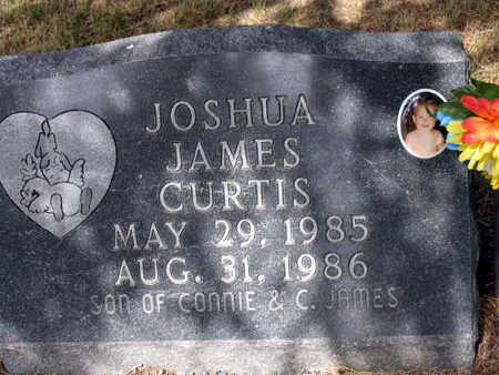 CURTIS, JOSHUA JAMES - Linn County, Iowa | JOSHUA JAMES CURTIS