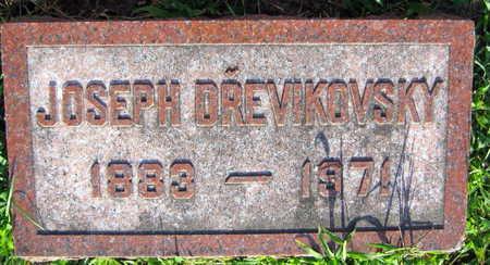 DREVIKOVSKY, JOSEPH - Linn County, Iowa | JOSEPH DREVIKOVSKY