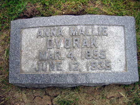 DVORAK, ANNE MALLIE - Linn County, Iowa | ANNE MALLIE DVORAK