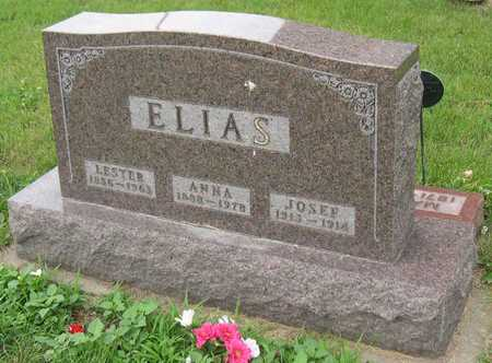 ELIAS, LESTER - Linn County, Iowa | LESTER ELIAS
