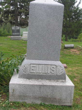 ELLIS, FAMILY STONE - Linn County, Iowa | FAMILY STONE ELLIS