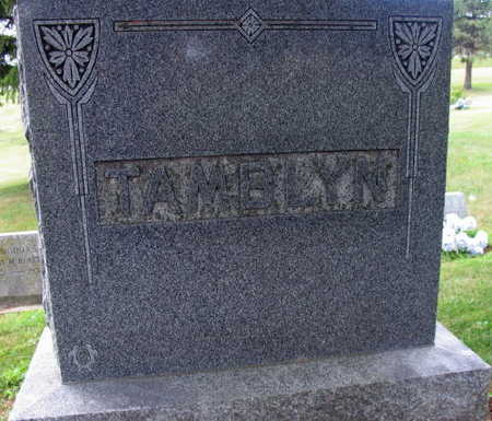 TAMBLYN, FAMILY STONE - Linn County, Iowa | FAMILY STONE TAMBLYN