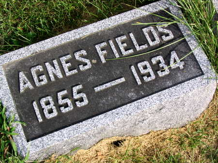 FIELDS, AGNES - Linn County, Iowa | AGNES FIELDS
