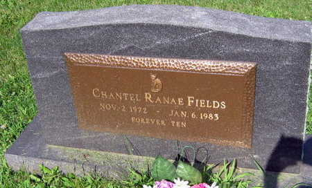 FIELDS, CHANTEL RANAE - Linn County, Iowa | CHANTEL RANAE FIELDS