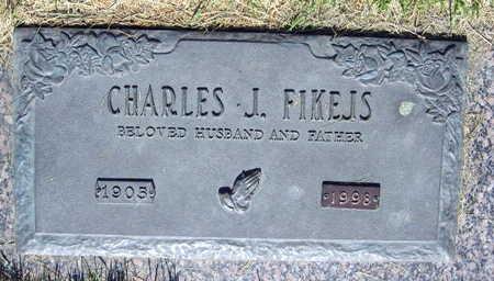 FIKEJS, CHARLES J. - Linn County, Iowa | CHARLES J. FIKEJS