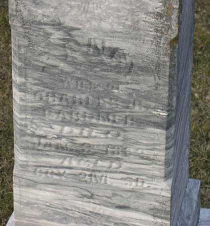 GARDNER, NANCY - Linn County, Iowa | NANCY GARDNER