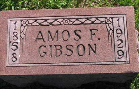 GIBSON, AMOS F. - Linn County, Iowa | AMOS F. GIBSON