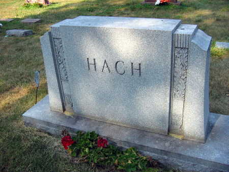 HACH, FAMILY STONE - Linn County, Iowa | FAMILY STONE HACH