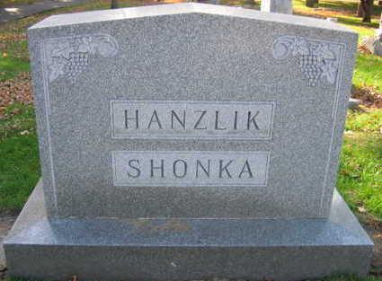 HANZLIK SHONKA, FAMILY STONE - Linn County, Iowa | FAMILY STONE HANZLIK SHONKA