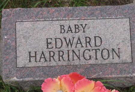 HARRINGTON, BABY  EDWARD - Linn County, Iowa | BABY  EDWARD HARRINGTON