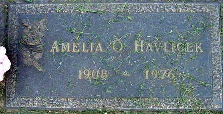 HAVLICEK, AMELIA O. - Linn County, Iowa | AMELIA O. HAVLICEK
