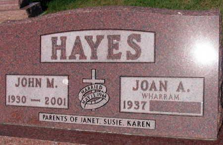 HAYES, JOHN M. - Linn County, Iowa | JOHN M. HAYES