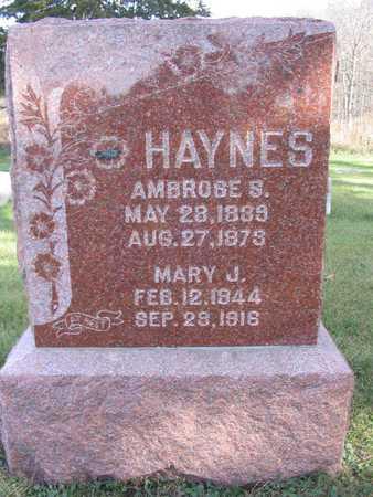 HAYNES, AMBROSE S. - Linn County, Iowa | AMBROSE S. HAYNES