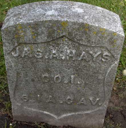 HAYS, JAS A. - Linn County, Iowa | JAS A. HAYS