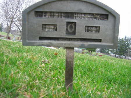 HOLECHEK, EMILIE - Linn County, Iowa | EMILIE HOLECHEK