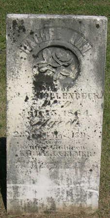 HOLLENBECK, RACHEL ANN - Linn County, Iowa | RACHEL ANN HOLLENBECK