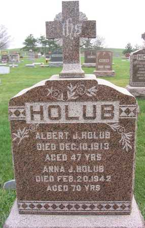 HOLUB, ALBERT J. - Linn County, Iowa | ALBERT J. HOLUB