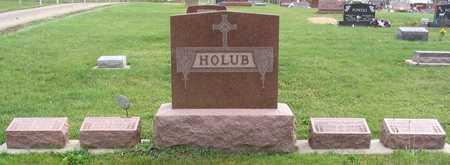 HOLUB, FAMILY STONE - Linn County, Iowa | FAMILY STONE HOLUB