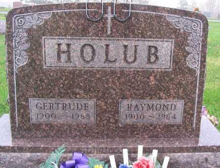 HOLUB, GERTRUDE - Linn County, Iowa | GERTRUDE HOLUB