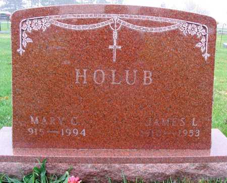 HOLUB, MARY C. - Linn County, Iowa | MARY C. HOLUB