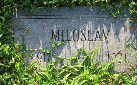 HOLUB, MILOSLAV - Linn County, Iowa | MILOSLAV HOLUB