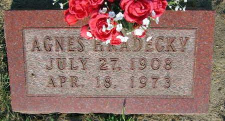 HRADECKY, AGNES - Linn County, Iowa | AGNES HRADECKY