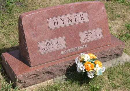 HYNEK, INFANT SONS - Linn County, Iowa | INFANT SONS HYNEK