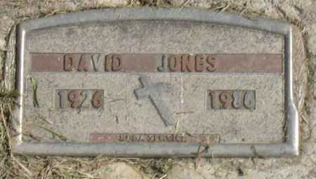JONES, DAVID - Linn County, Iowa | DAVID JONES