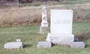 JONES, JOHN Y. (FAMILY PLOT) - Linn County, Iowa | JOHN Y. (FAMILY PLOT) JONES