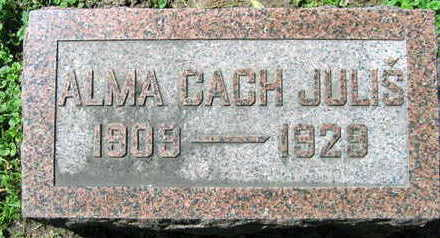 JULIS, ALMA - Linn County, Iowa | ALMA JULIS