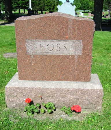 KOSS, FAMILY STONE - Linn County, Iowa | FAMILY STONE KOSS