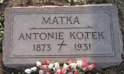 KOTEK, ANTONIE - Linn County, Iowa | ANTONIE KOTEK