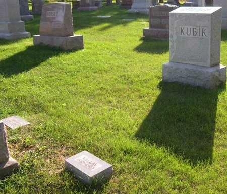 KUBIK, FAMILY STONE - Linn County, Iowa | FAMILY STONE KUBIK