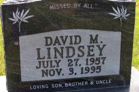 LINDSEY, DAVID M. - Linn County, Iowa   DAVID M. LINDSEY