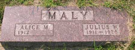 MALY, JULIUS W. - Linn County, Iowa | JULIUS W. MALY
