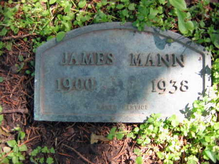 MANN, JAMES - Linn County, Iowa | JAMES MANN