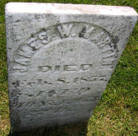 MARTIN, JAMES W. - Linn County, Iowa   JAMES W. MARTIN