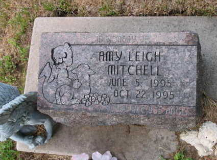MITCHELL, AMY LEIGH - Linn County, Iowa | AMY LEIGH MITCHELL